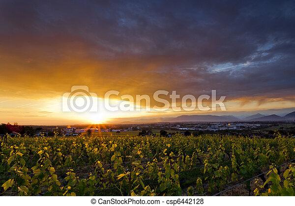 Sunrise  - csp6442128