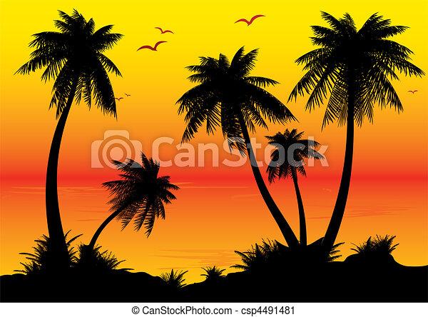 sunrise. - csp4491481