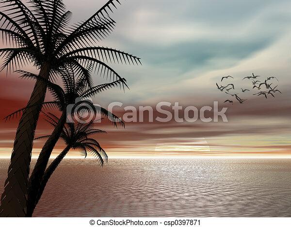 sunset., トロピカル - csp0397871