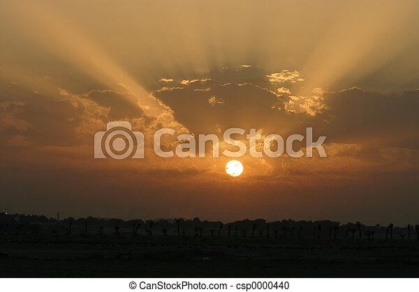 Sunset 3 - csp0000440