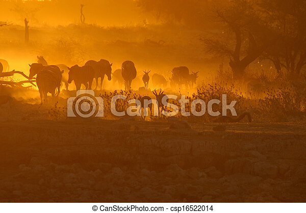 Sunset at Okaukeujo waterhole, Namibia - csp16522014