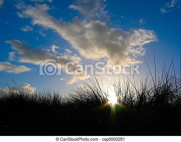 Sunset at the beach - csp0000281