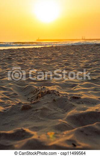 Sunset at the Beach - csp11499564