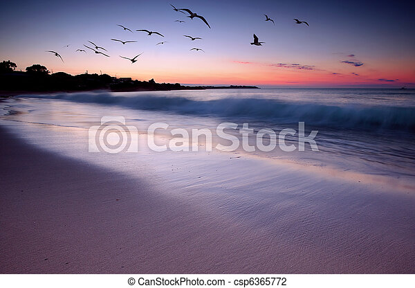 Sunset Beauty - csp6365772