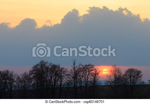 Sunset behind the trees - csp60146701