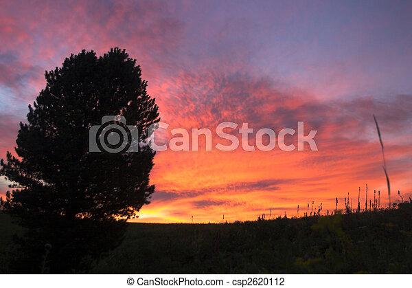 sunset color - csp2620112