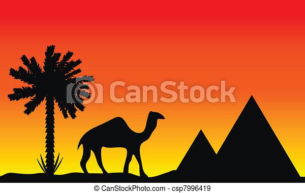 Sunset in Egypt - csp7996419