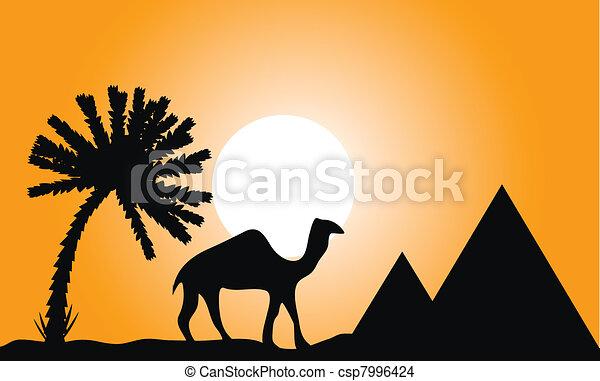 Sunset in Egypt - csp7996424
