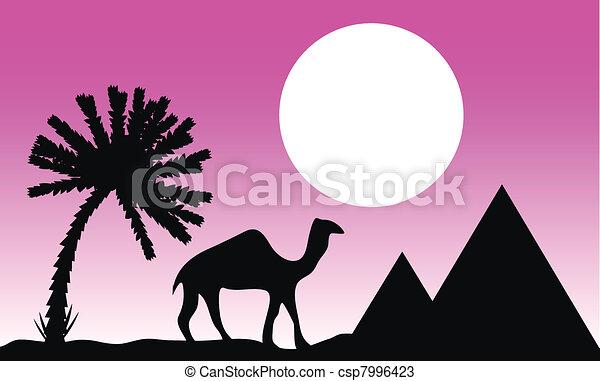 Sunset in Egypt - csp7996423