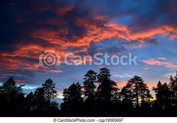 Sunset in scarlet - csp19365697