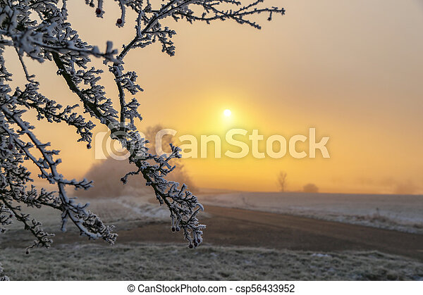 Sunset in the winter - csp56433952