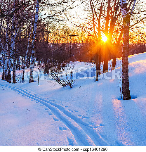 Sunset in winter forest - csp16401290