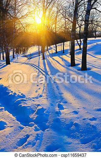 Sunset in winter forest - csp11659437
