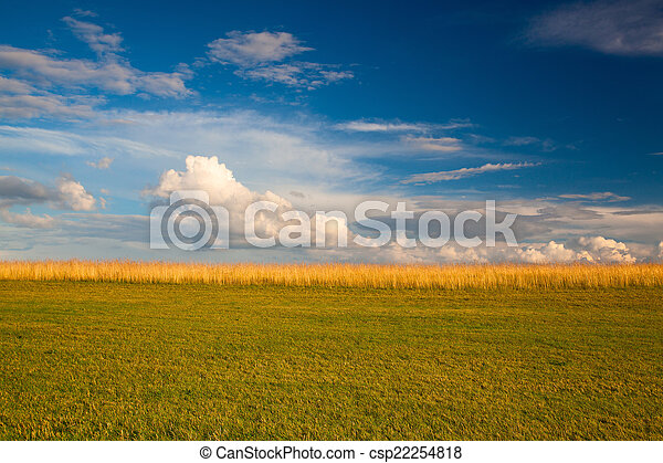 Sunset on a golf course - csp22254818