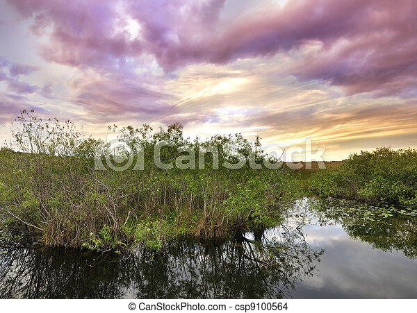 Sunset On A Tropical River - csp9100564