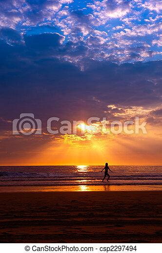 Sunset on the beach - csp2297494
