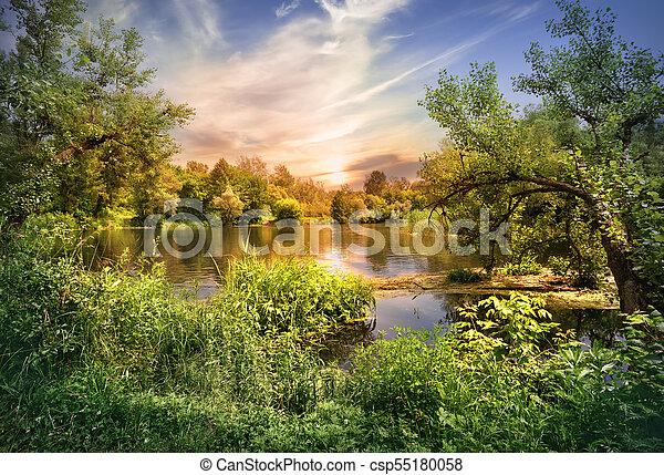 Sunset on the lake among greenery - csp55180058