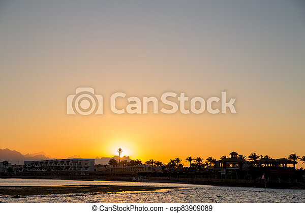 sunset on the sea with palm trees in the evening - csp83909089