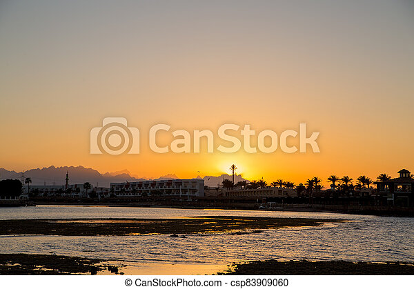 sunset on the sea with palm trees in the evening - csp83909060