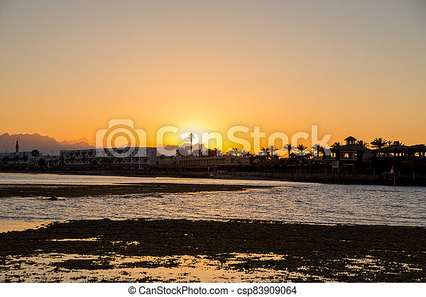 sunset on the sea with palm trees in the evening - csp83909064