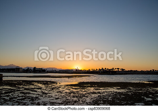 sunset on the sea with palm trees in the evening - csp83909068