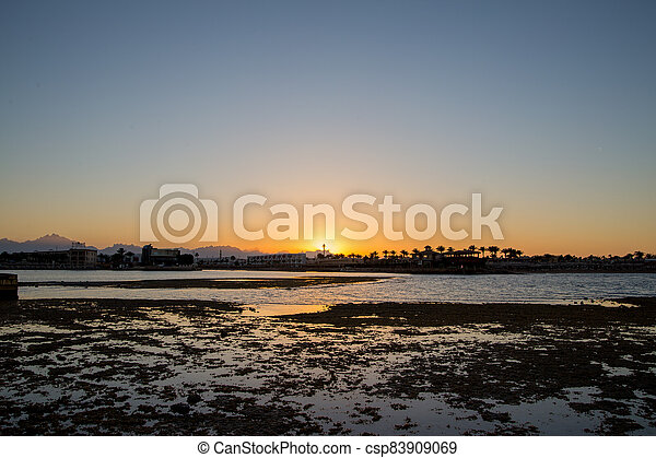 sunset on the sea with palm trees in the evening - csp83909069
