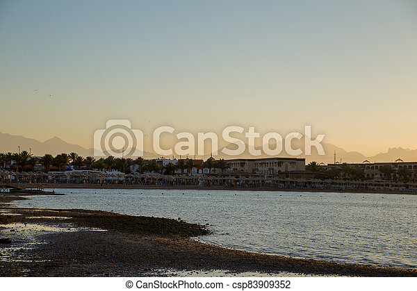 sunset on the sea with palm trees in the evening - csp83909352