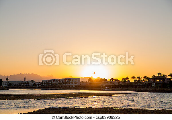 sunset on the sea with palm trees in the evening - csp83909325