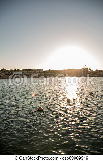 sunset on the sea with palm trees in the evening - csp83909349