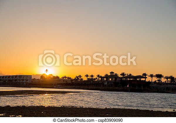 sunset on the sea with palm trees in the evening - csp83909090