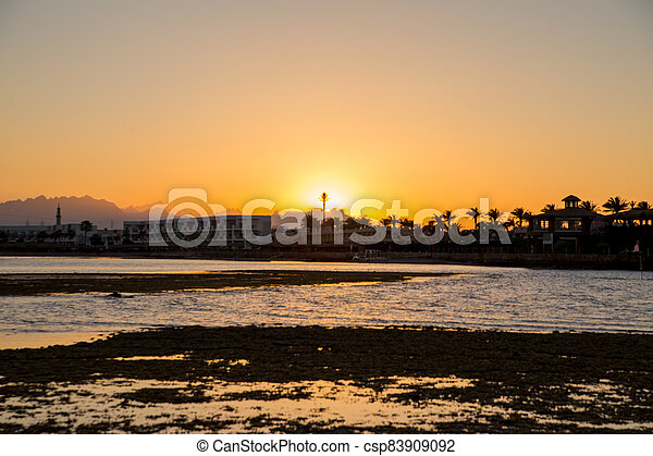 sunset on the sea with palm trees in the evening - csp83909092
