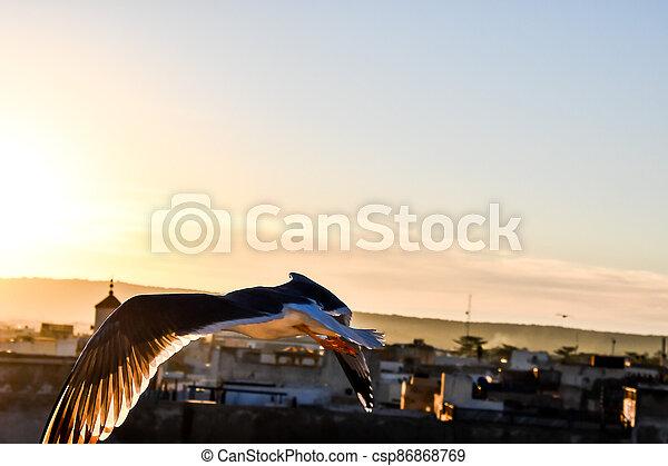 sunset over bridge, photo as background - csp86868769