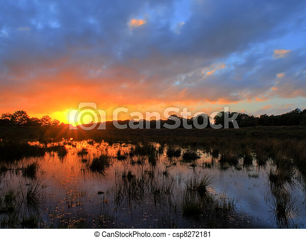 Sunset over dutch heathland with a pond on the foreground - csp8272181