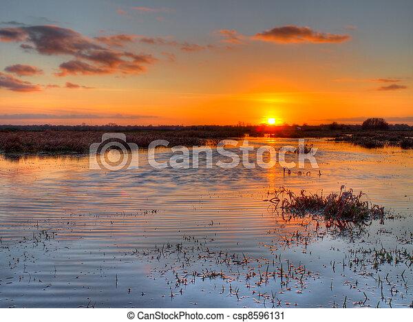 Sunset over dutch wetland - csp8596131