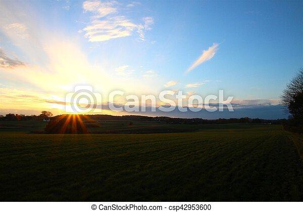 Sunset over grass field - csp42953600