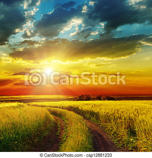 sunset over rural road near green field - csp12881233