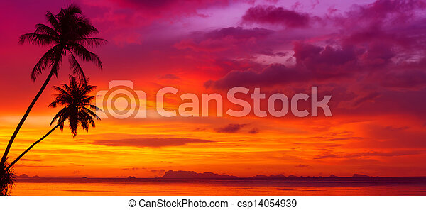Sunset over the ocean with tropical palm trees silhouette panorama - csp14054939
