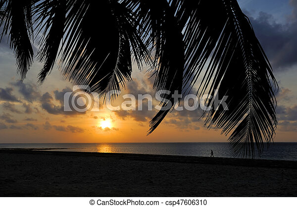 Sunset over the tropical beach - csp47606310