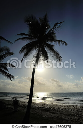 Sunset over the tropical beach - csp47606378