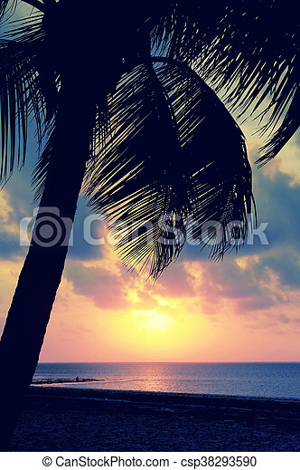 Sunset over the tropical beach - csp38293590
