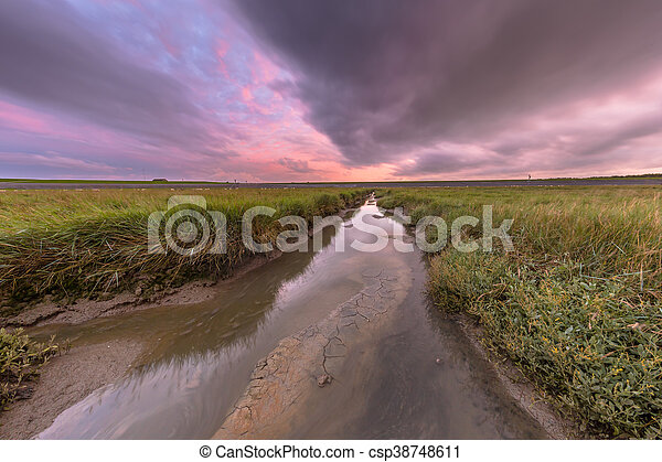 Sunset over tidal creek - csp38748611