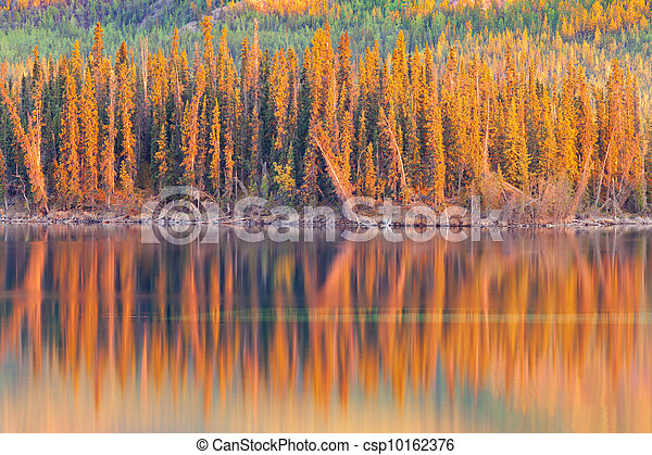 Sunset reflections on boreal forest lake in Yukon - csp10162376