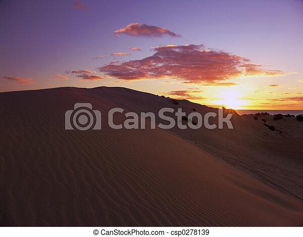 Sunset Sanddunes - csp0278139