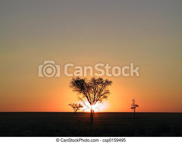 Sunset - csp0159495