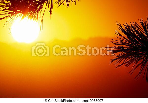 sunset - csp10958907
