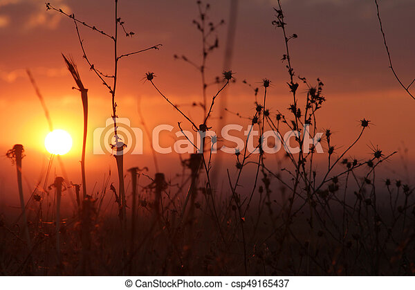 Sunset - csp49165437