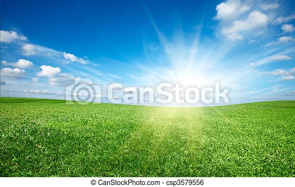 Sunset sun and field of green fresh grass under blue sky - csp3579556