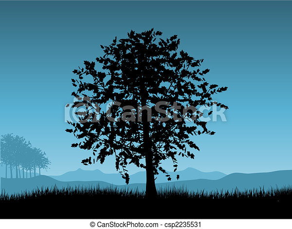 Sunset tree - csp2235531