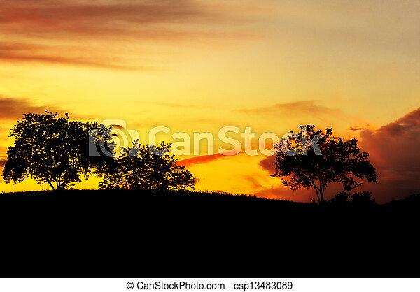 Sunset trees - csp13483089