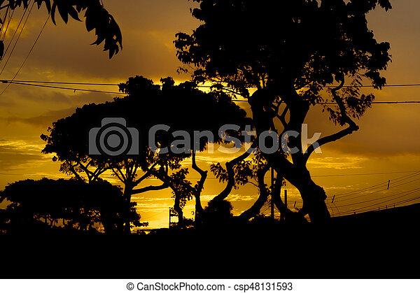 Sunset Urban Scene Guayaquil, Ecuador - csp48131593